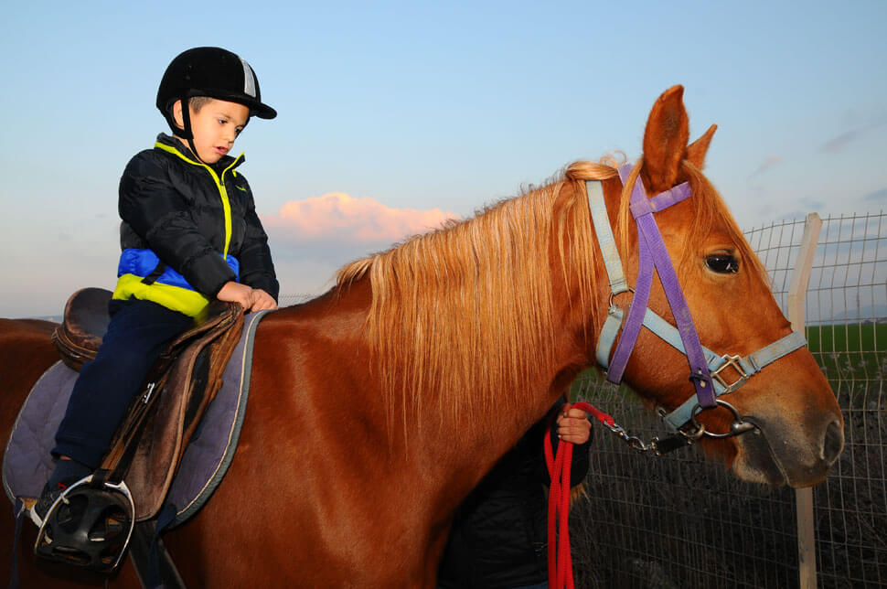 Therapeutic Riding - Child with Disabilities